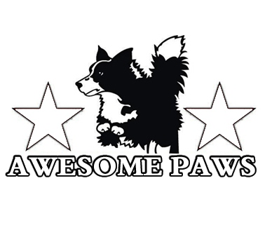 Awesome Paws Discussion Forum